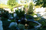 Custom-Residential-Pond