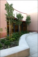 Planter-at-Eastvale-Elementary-jpg